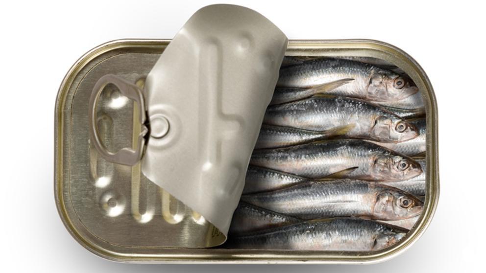 llauna sardina